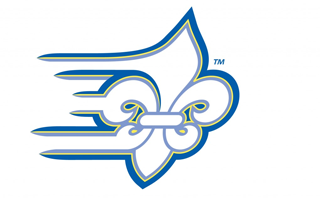 LIMESTONE COLLEGE ATHLETICS GROW WITH NEW SHAW SPORTS TURF FIELD