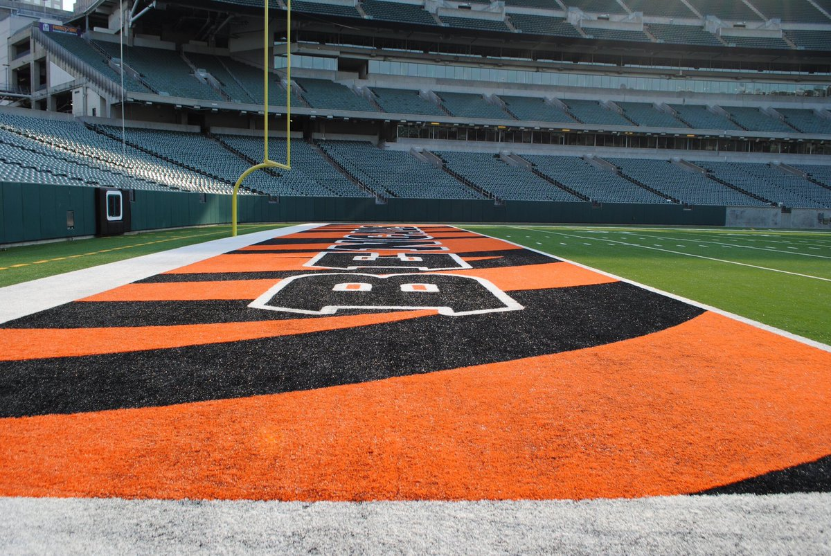 Cincinnati Bengals - Paul Brown Stadium Image 2