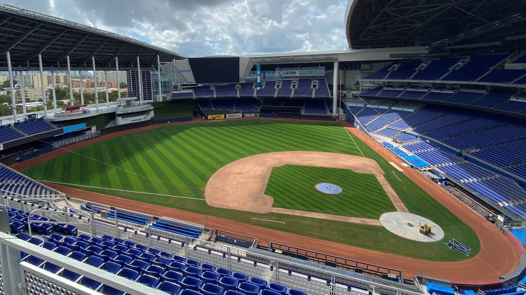 marlinspark-(1).jpg